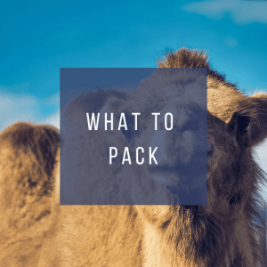 Button to click to learn what to pack for a trip to Morocco.