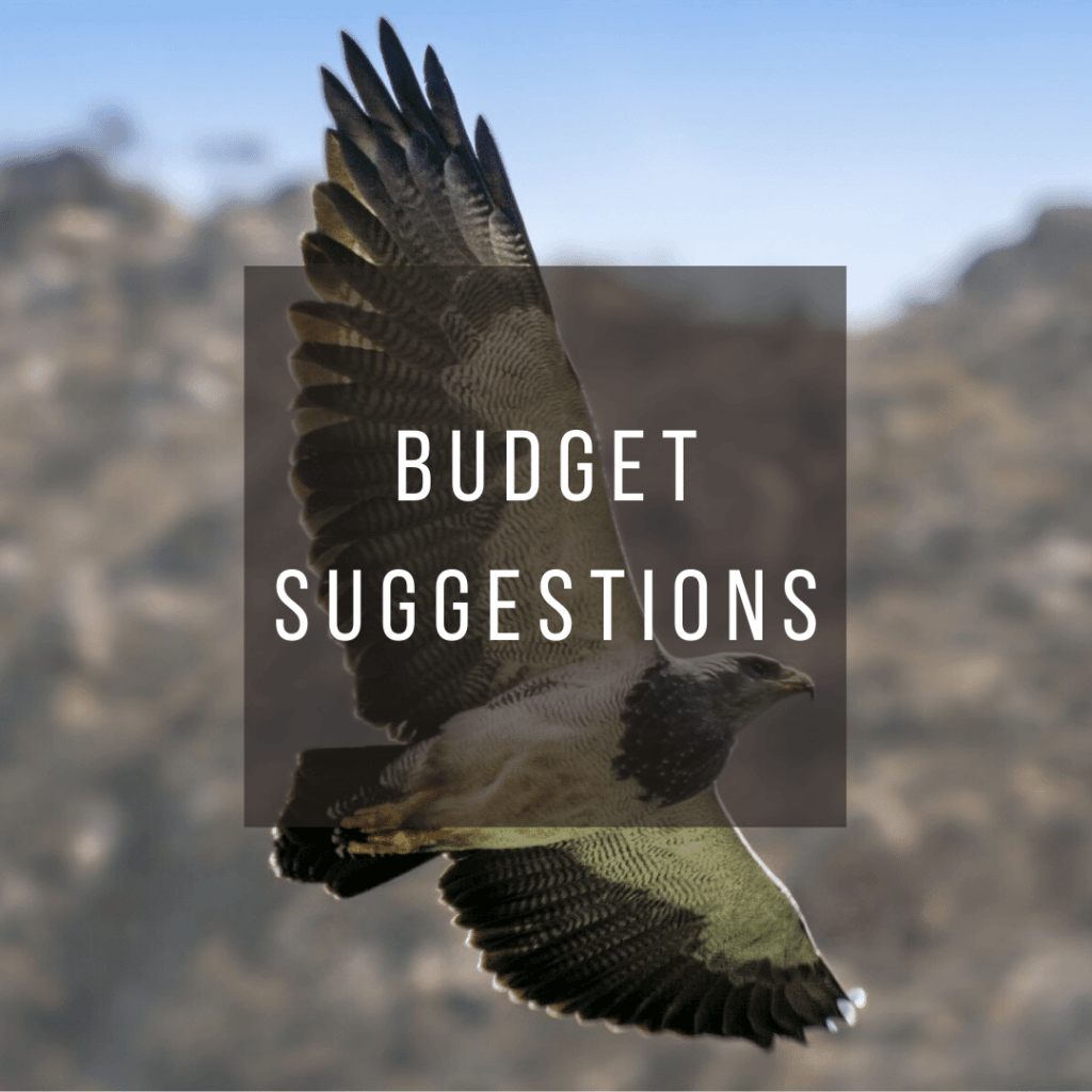 Button to click to learn budget suggestions for a trip to Argentina