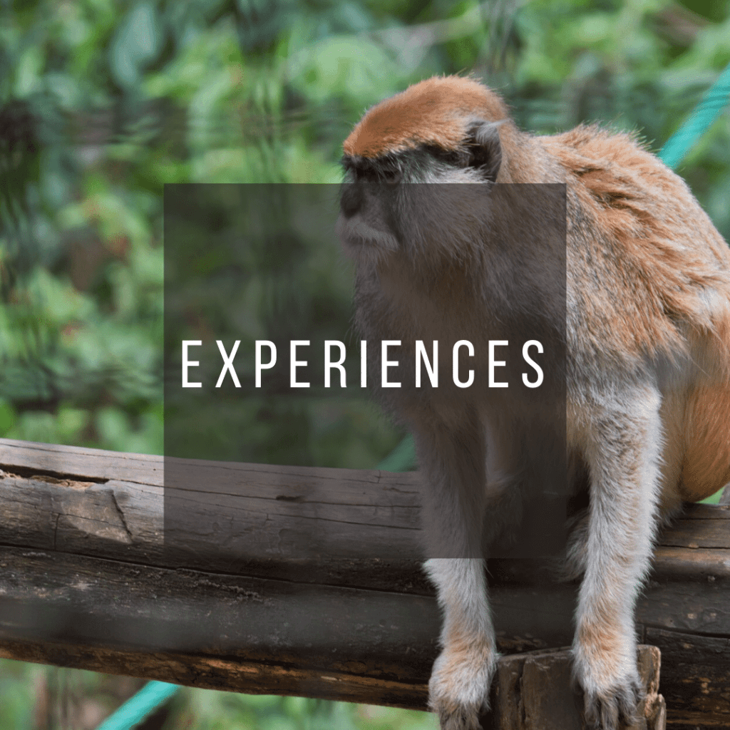 Button to click to learn what to experience on a trip to Costa Rica.