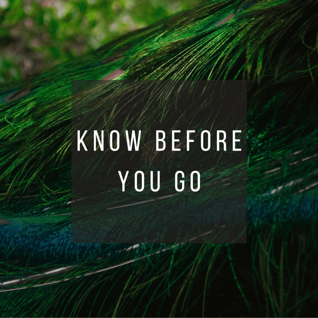 Button to click to learn what you need to know before you go to Costa Rica.