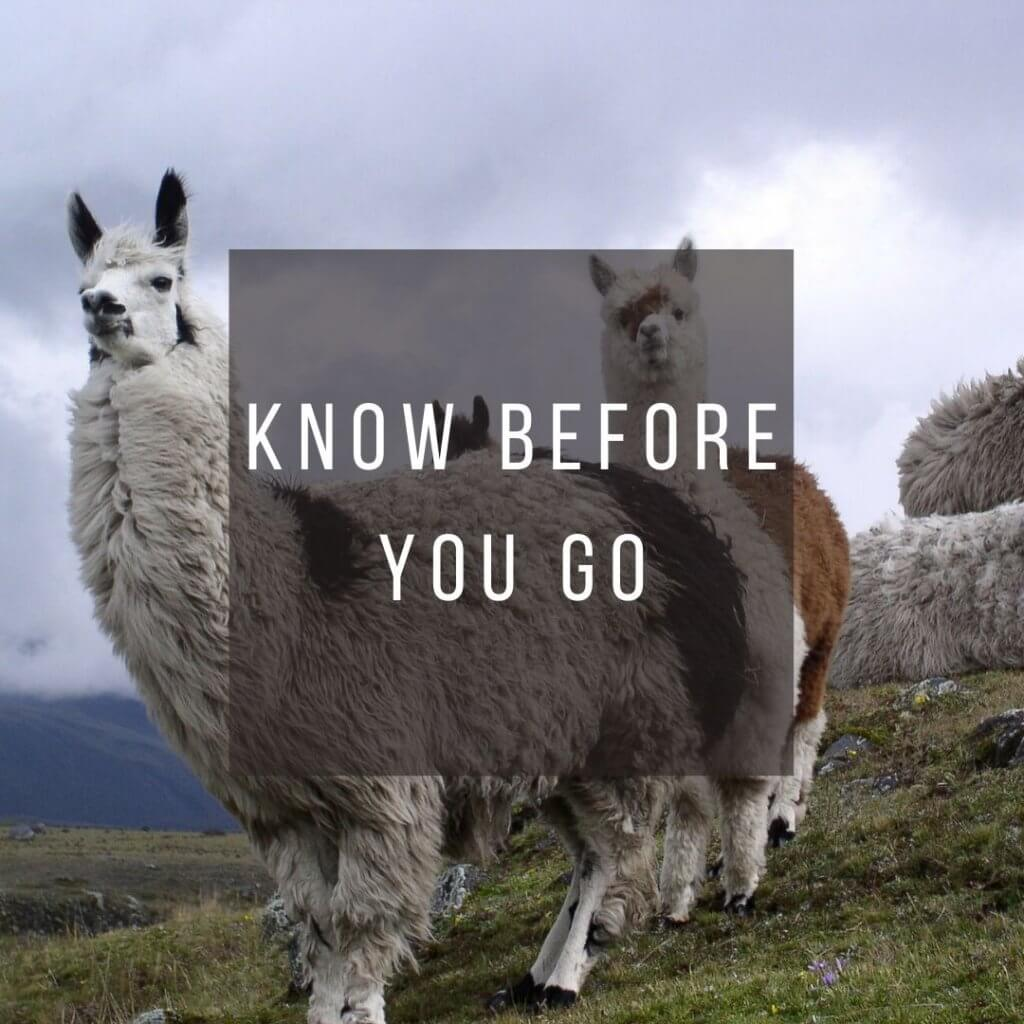 Button to click to learn what you need to know before you go to Ecuador.