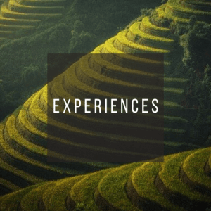 Button to click to learn what to experience on a trip to Indonesia.