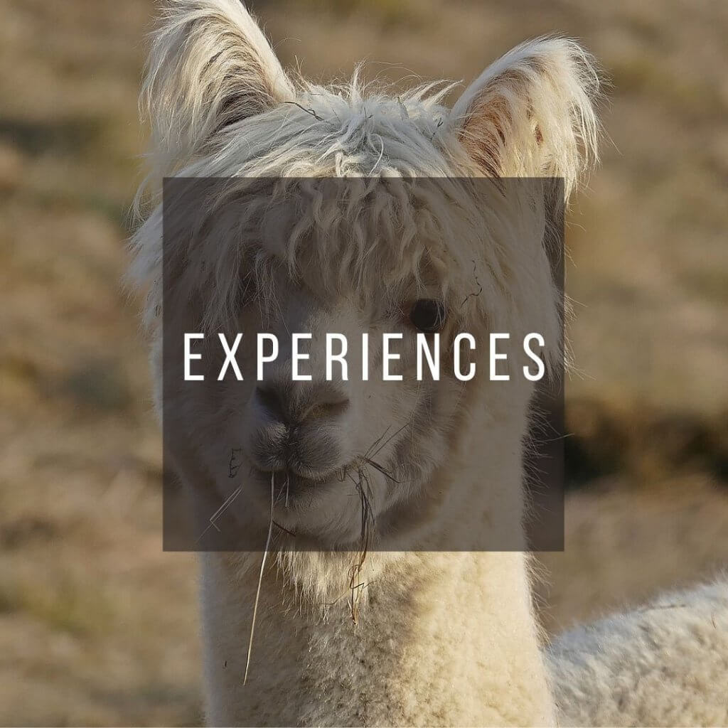 Button to click to learn experiences to have on a trip to Peru