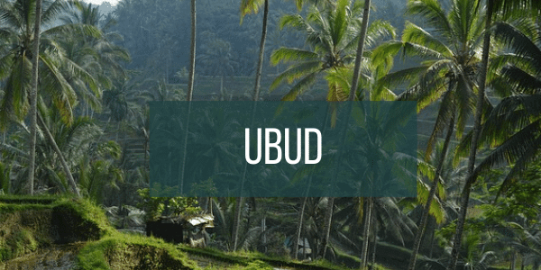 Button to click to view Ubud Bali travel guide.