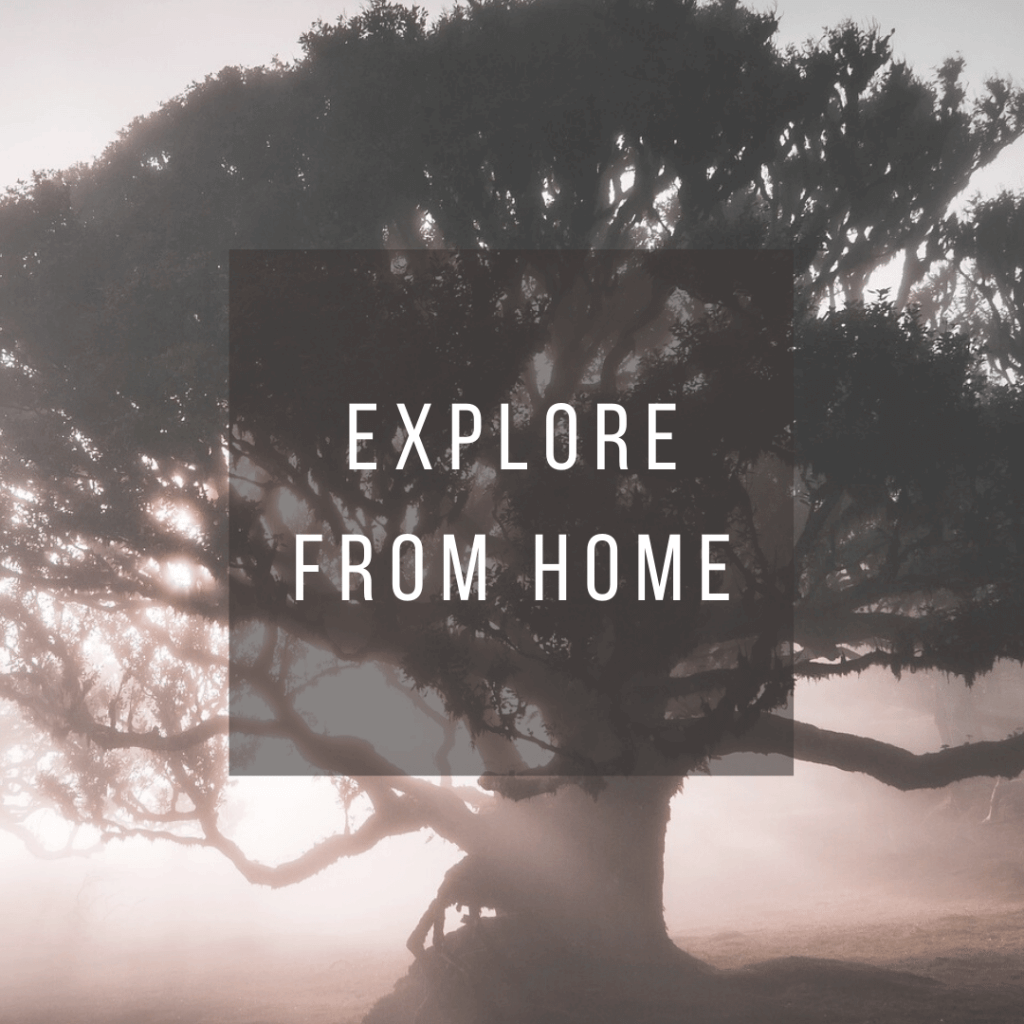 Button to click to learn how to virtually explore Portugal from Home.