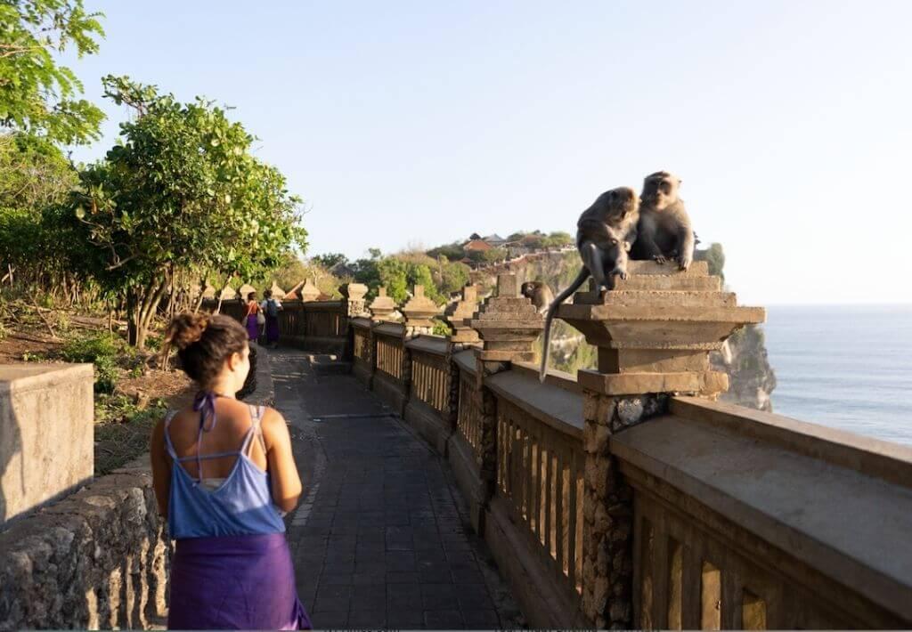 GIrl walking in Uluwatu Temple in front of two Bali Monkeys