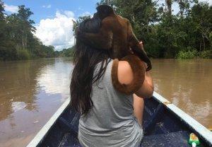 Adventure in the Peruvian Amazon