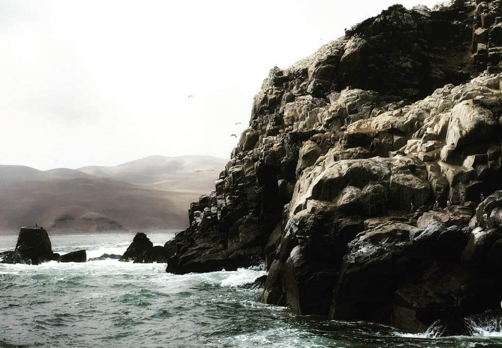 Palomino Islands in Lima, Peru