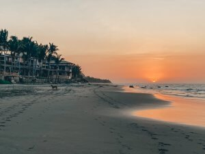 Playa Mancora in Peru with a view of the sunset. Pictured here is an orange, yellow and light blue sky, beach sand, homes and trees. There is also a small stray dog in the distance