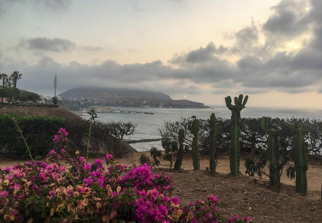Barranco, Lima, Peru. Island in background. Beach. Flowers and cacti in front. Ocean in distance.