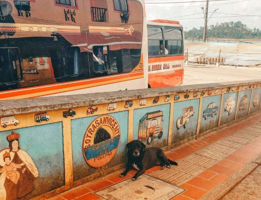 Bus to take to get from Medellin to Guatape. There is a dog in the front, a colorful barricade, and two buses behind it.